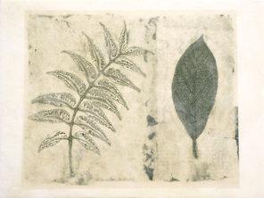 Folio Botanica- Por Salud (Neem y Aguacate)