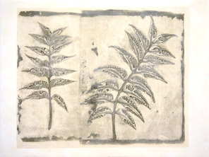 Folio Botanica-Neem (oscuro)