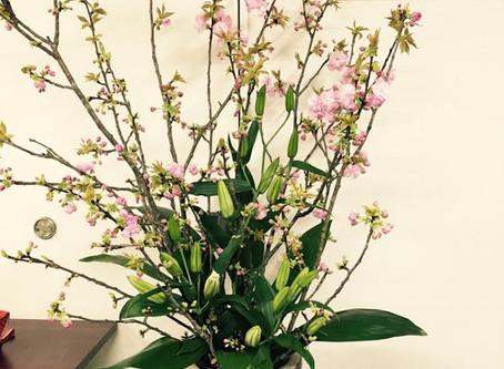 桜花展開催中です。