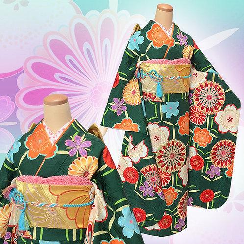 緑地 菊桜(R1809)