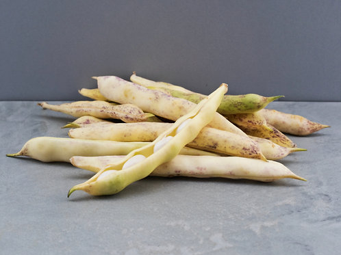 Paimpol Haricot Beans - 86p/100g