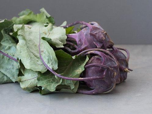 Purple Kohlrabi