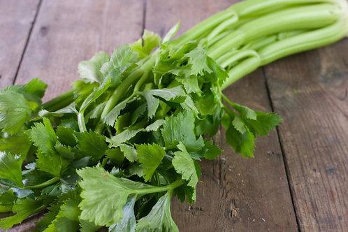 Green Celery - £4.30/kg