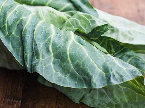 Hispi Cabbage