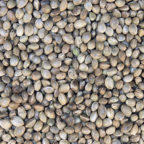Hemp Seeds £1.00/100g