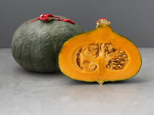 Pumpkin - Delica