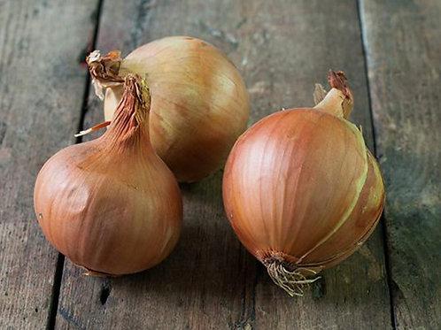 Golden Onions - £1.45/kg