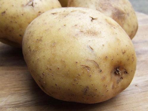 Jacket Potatoes - 40'S -£1.38/kg