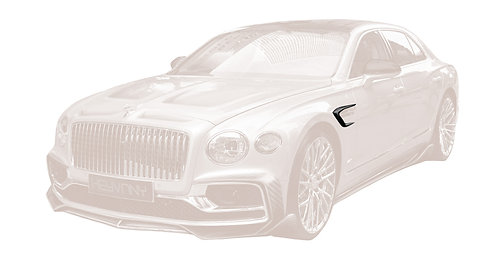FLYING SPUR CARBON FIBRE FENDER GRILL HOUSING