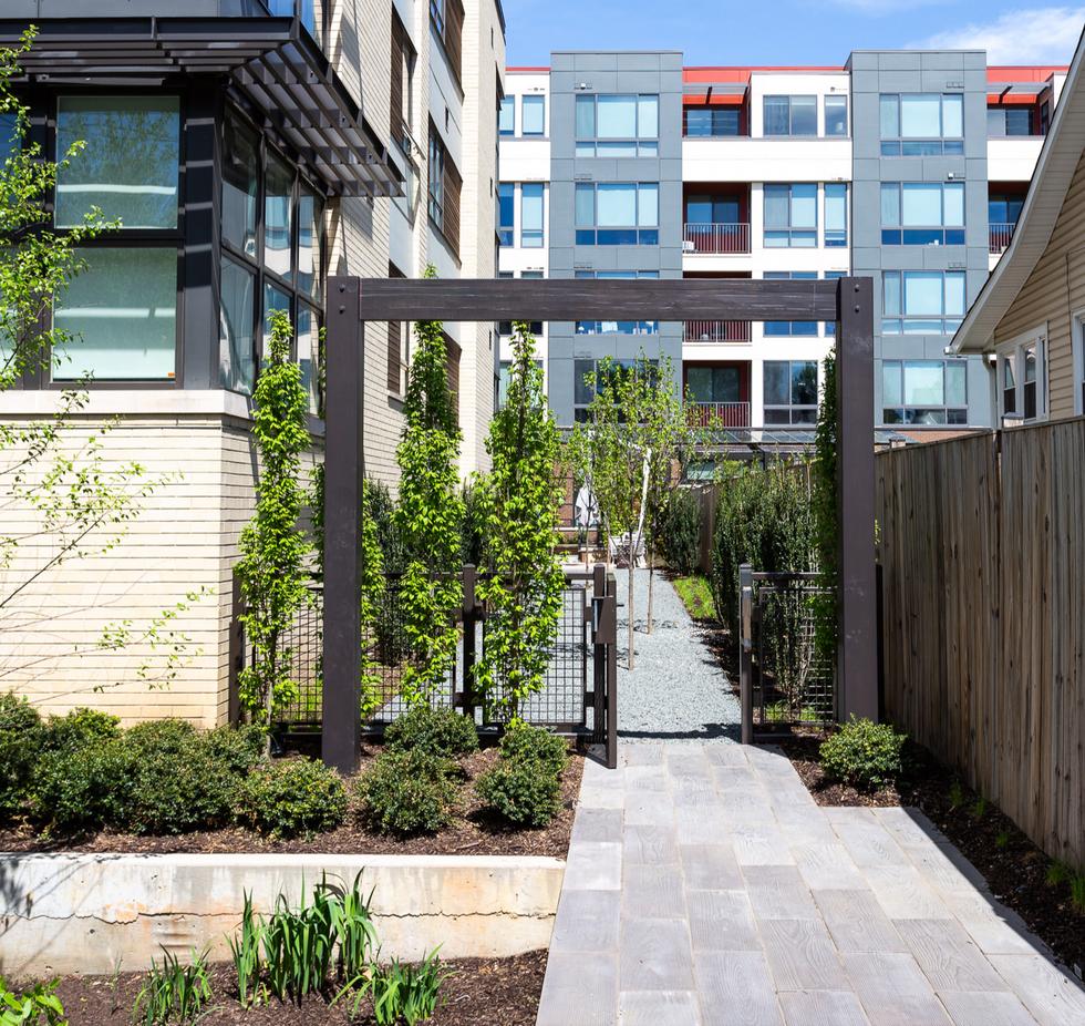Installed landscape for boutique apartments in Arlington, VA
