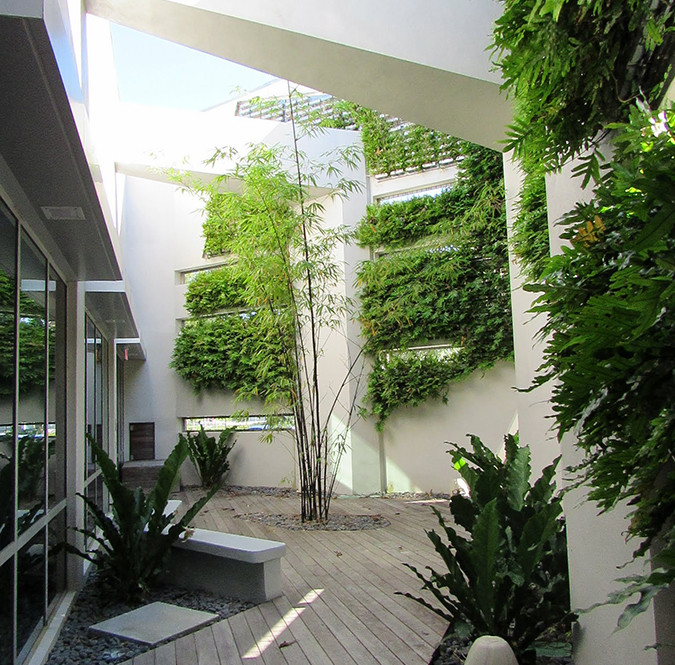 Interior Courtyard Two, Northeast Library, Aventura, Florida Landscape Architect & LEED Consulting: M. Chris Alonso