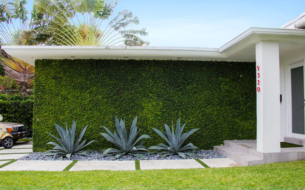 Established landscape at Miami Beach residence