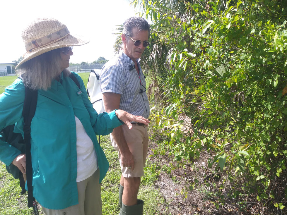 Site visit with a restoration ecologist, botanist, and hoticulturalist