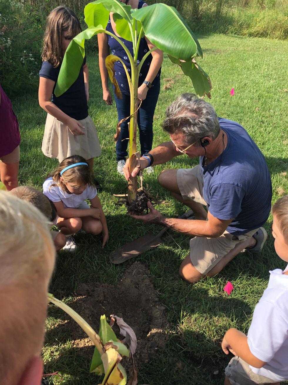 Teaching local school kids about planting banana plants