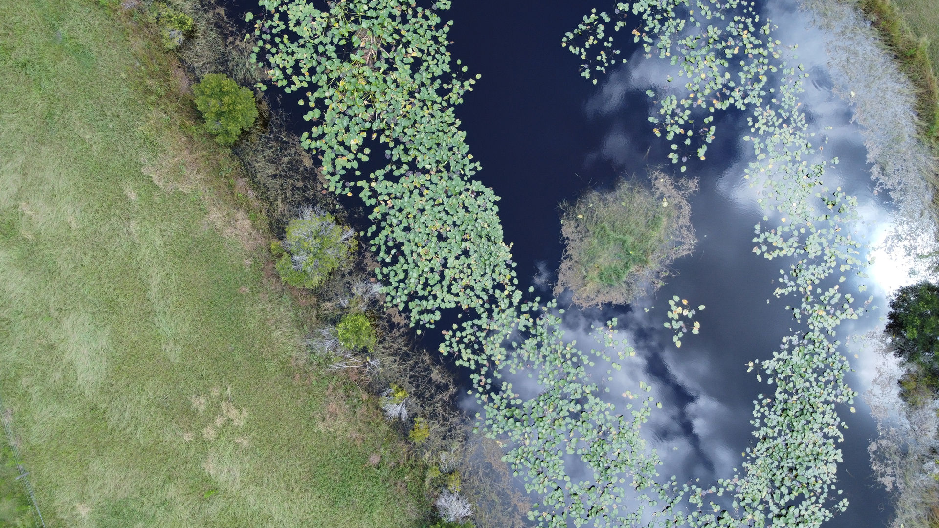 Punta Gorda site visit aerial