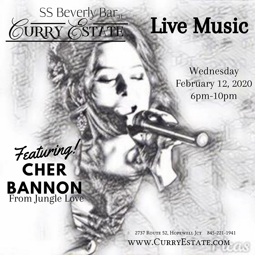 Cher Bannon Live Music 2/12/20