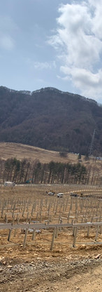 長野60MW