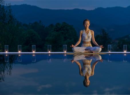 茶修Tea Meditation