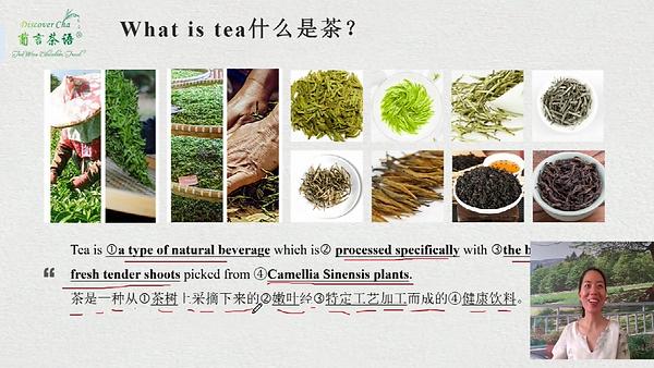 Lesson 2 茶叶分类和理论依据.png