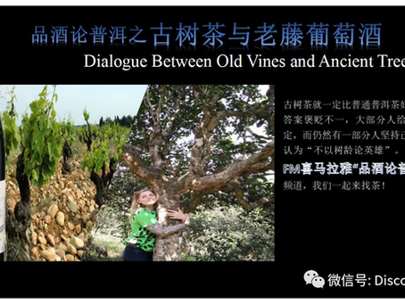 Ancient Tea&Old Vines, The Older The Better?