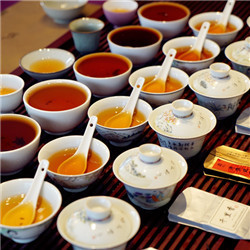 DiscoverCha Tea Tasting&evaluation 1.jpg