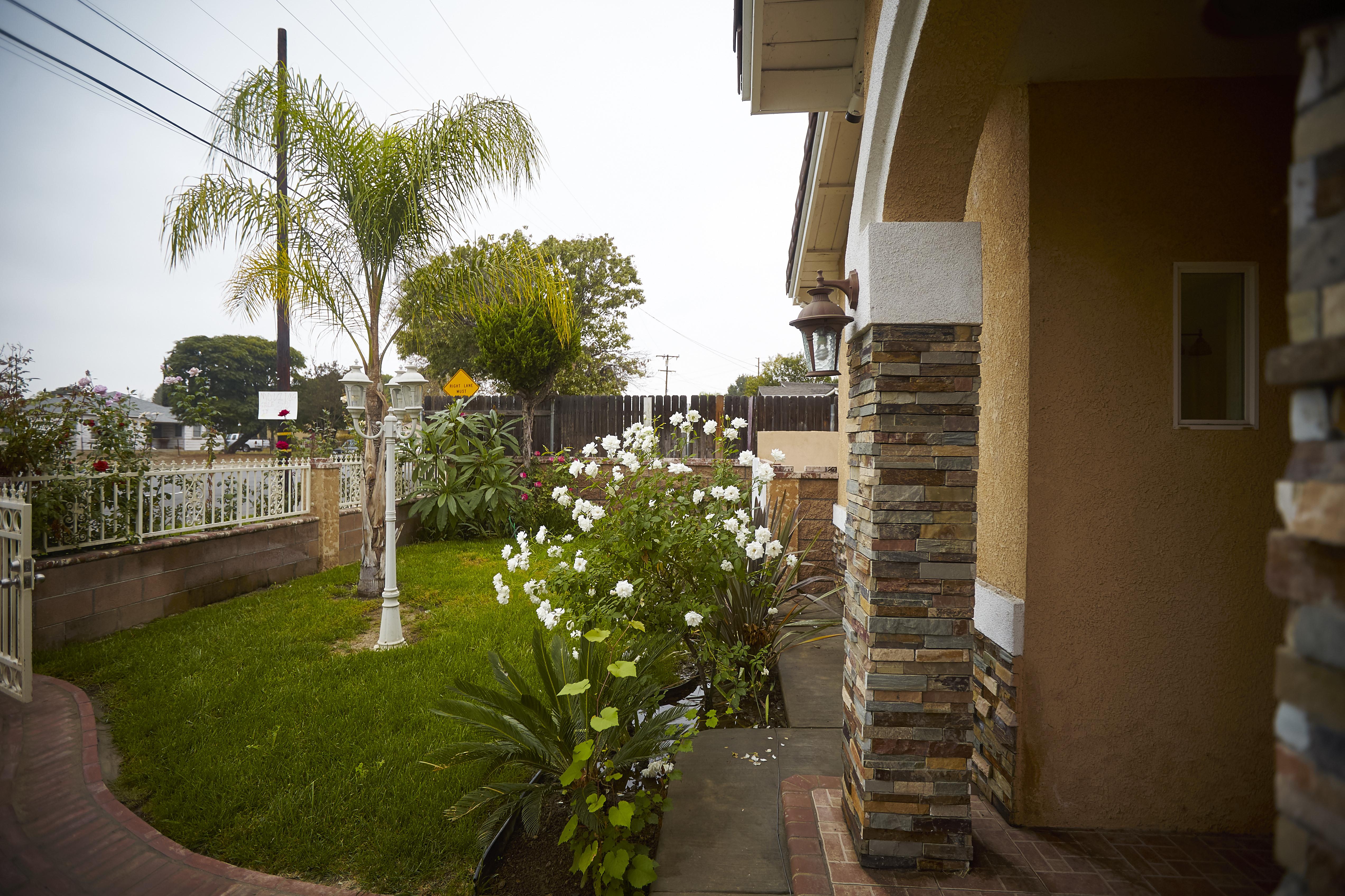 Left side front yard