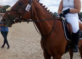 Notre Equipe Fertoise d'Equitation au championnat de France à Lamotte Beuvron