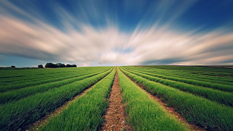 viagens técnicas, agronegócio