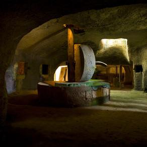 La storia dell'olio extravergine d'oliva
