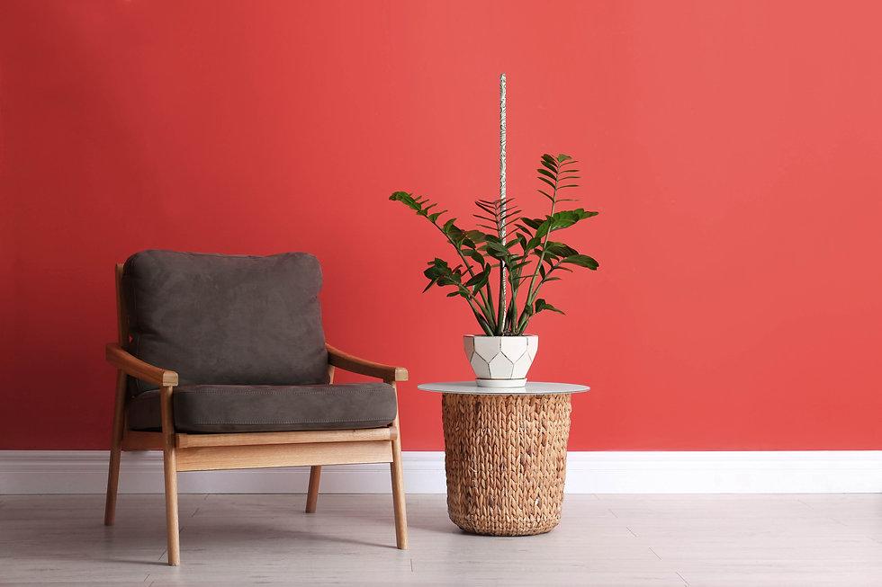 fiore-houseplant-c2.jpg