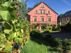AUB - Wein