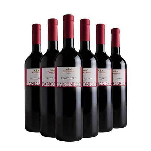 Canonico - Pinot Nero Igt Marca Trevigiana bottles 6 x 75 cl