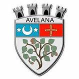 logo_lavelanet.jpeg
