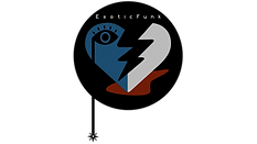 Exoticfunk Logo_transparent bkgrd.png