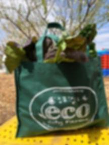 eco city farms.jpg