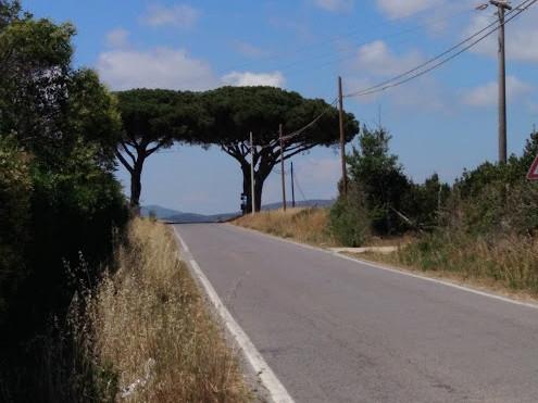 Roads less travelled