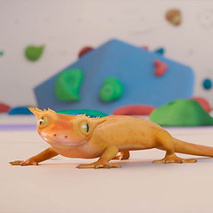 Gecko Tango_square.jpg