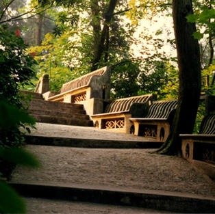 Serene stairs at a mountain monastery.