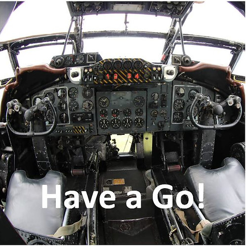 Have a Go with a Griffon (Admission not included)