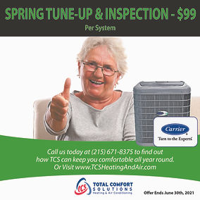 TCS.Spring.Specials.Ads_Artboard 3.jpg