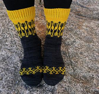 savo socks.jpg