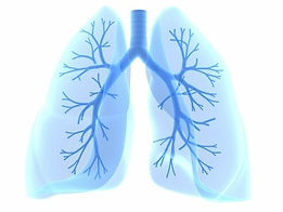 blue%20lungs_edited.jpg