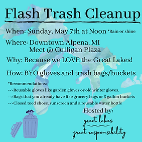 Flash Trash Cleanup Flyer Example
