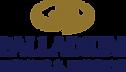 Palladium_Logo.png