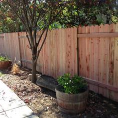 Redwood Dog Ear- 2 Rail Fence
