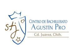 logo_0011_agustinpro.jpg