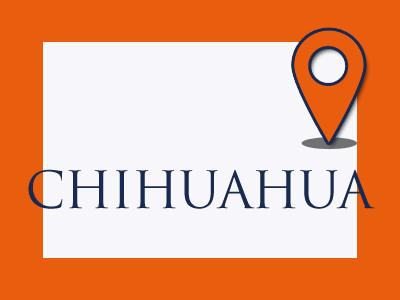 cub_0001_CHIHUAHUA.jpg