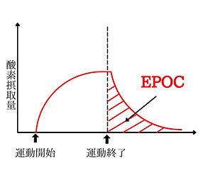天満・天王寺・道頓堀・京橋パーソナルトレーニングLOLではトレーニング後の脂肪燃焼のEPOCを高めるトレーニングメソッドで脂肪燃焼効果を最大限にします。