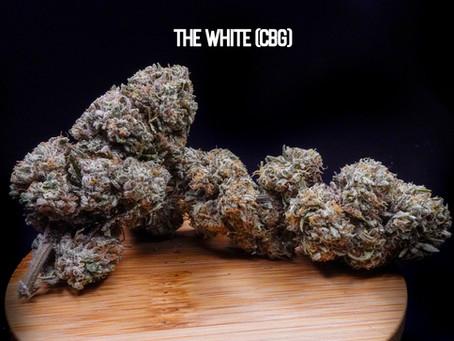 THE WHITE (CBG) FLOWER - Top Shelf Hemp Co. Product Profile