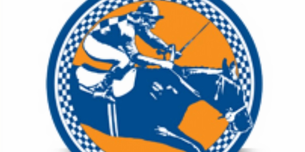 Foxfield Spring Races